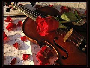 Musica Matrimoni - Servizi